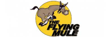 The Flying Mule
