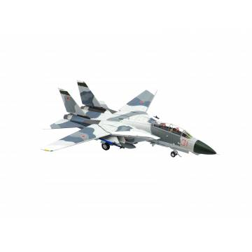 1/72 F-14A VF-126 Red 31 'Tomcatsky' BuNo 159855